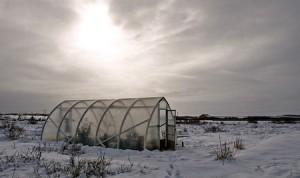 Bild växthus i vinterlandskap.